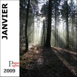 Index janvier 2009 copie