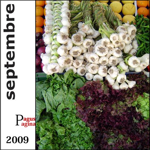 Index septembre 2009 copie copie