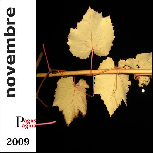 Index novembre 2009 copie